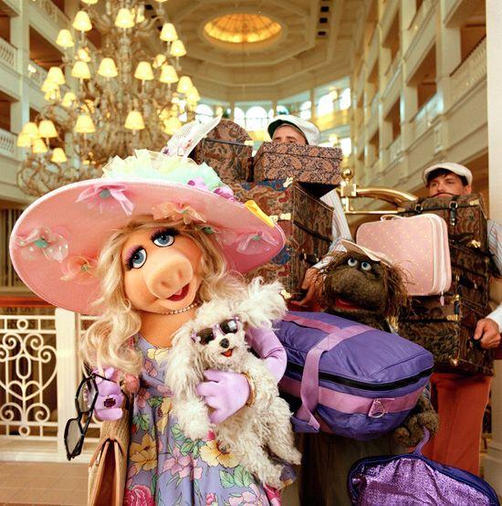 21 Best Muppet Love Images On Pinterest: 23 Best Miss Piggy Quotes Images On Pinterest
