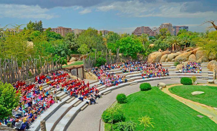 """Bioparc Valencia presenta su """"gran aula de naturaleza"""" a la comunidad docente"""