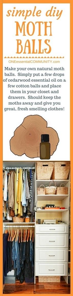 genius essential oil tip #16 (of 31)- there's even a FREE PRINTABLE of all 31 ideas!! -- Love this one! Make your own natural moth balls.  Simply put a few drops of cedarwood essential oil on a few cotton balls and place them in your closet and drawers.  Should keep the moths away and give you great, fresh smelling clothes!