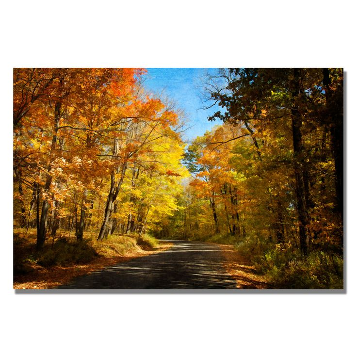 Trademark fine art fall walkway by lois bryan canvas wall art be sure to check out this awesome product