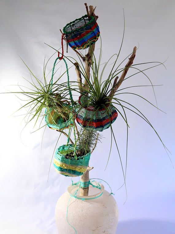 ghost net baskets and air plants