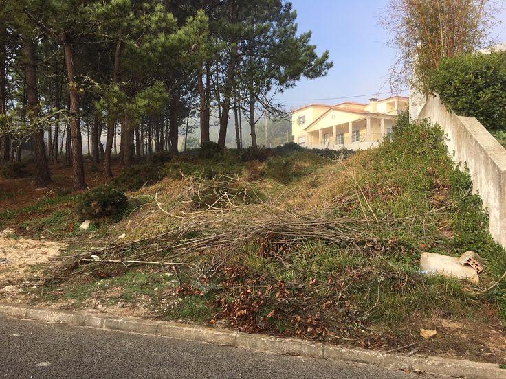 Lote de terreno em Salir do Porto - a pouca distância da praia e Baía de São Martinho do Porto