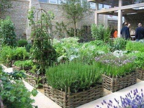 Gorgeous raised beds