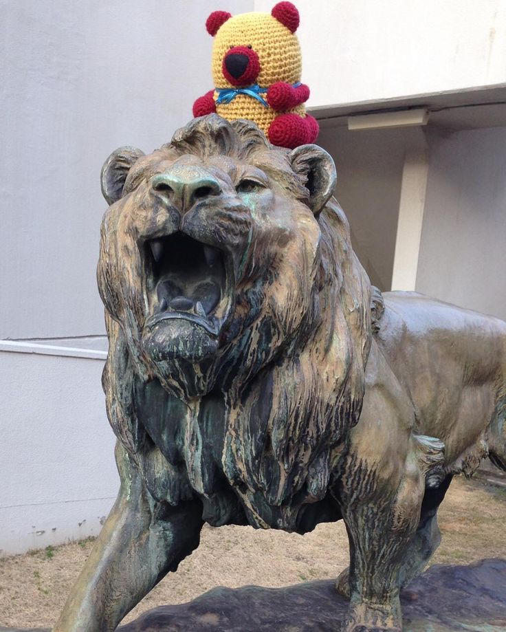 eco bear on the king of animal. He is storing.  But tender to me. #Japan #Japanese #amigurumi #bear #ecology #ecobear #kingofanimal #heisstrong #tendertome #日本#編みぐるみ#クマ#エコベア#エコロジー #百獣の王#彼は強い#だけど私には優しい by ecobear23