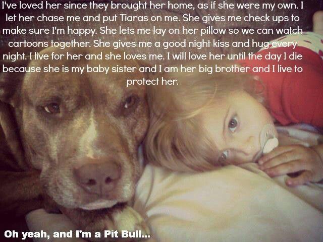Oh yeah, and I'm  Pitt Bull
