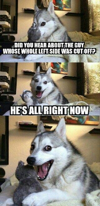 Pun dog - funny memes