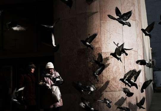 Dos mujeres pasean por una calle en Moscú, Rusia. - Spencer Platt