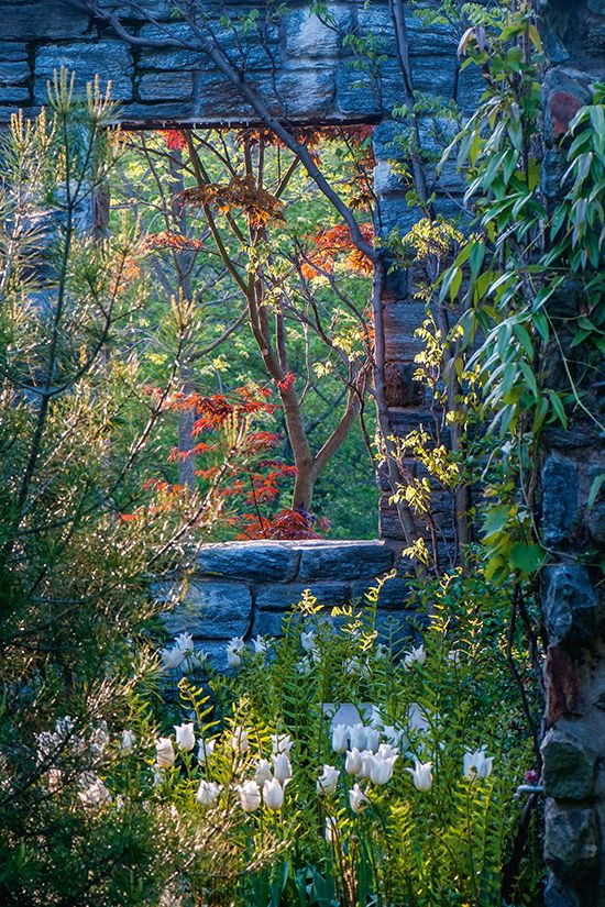 Photo By Rob Cardillo From The Book THE ART OF GARDENING.