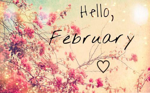 Risultati immagini per hello february tumblr