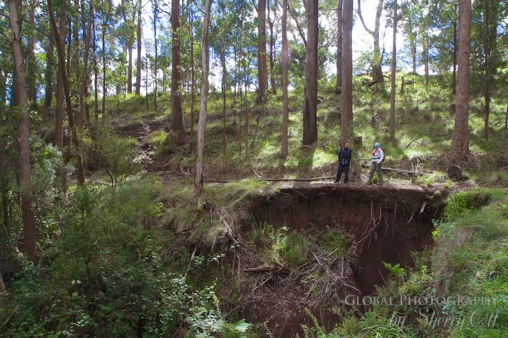 Pioneering the Scenic Rim Trail via @ottsworld