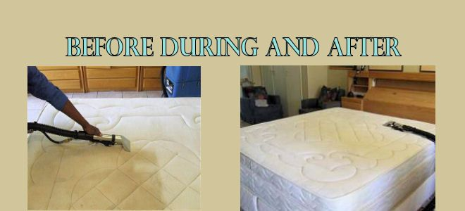 Tip Top Clean Team 24 hours 7 days client care helpline, even on public holidays. Call Us: @ 1800 256 995