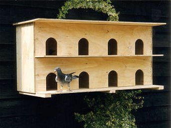 roosting+box+plans+for+birds | wall-mounted pigeon nesting box