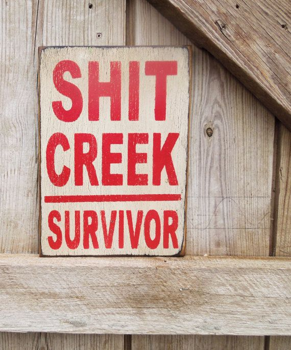 This shop makes the most wonderful upcycled recycled wood signs. Hand painted I have them hanging in my studio. Love this shop. Funny quotes sign Shit Creek Survivor sign by KingstonCreations