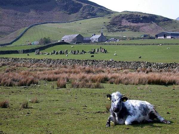 Swinside Stone Circle - Photo by Nicola Didsbury.