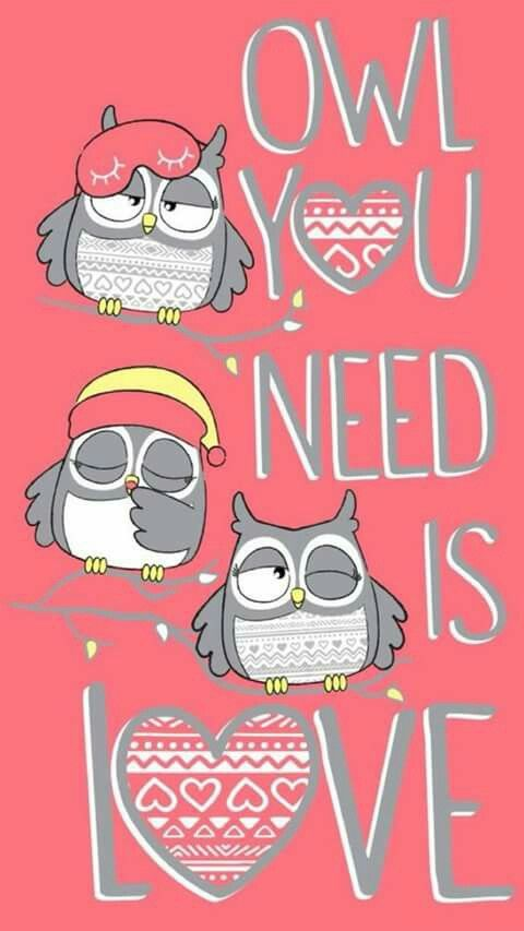 173 best owls images on pinterest owls beautiful birds and the justice is your one stop shop for on trend styles in tween girls clothing accessories shop our glow in the dark owl nightgown moos voltagebd Image collections