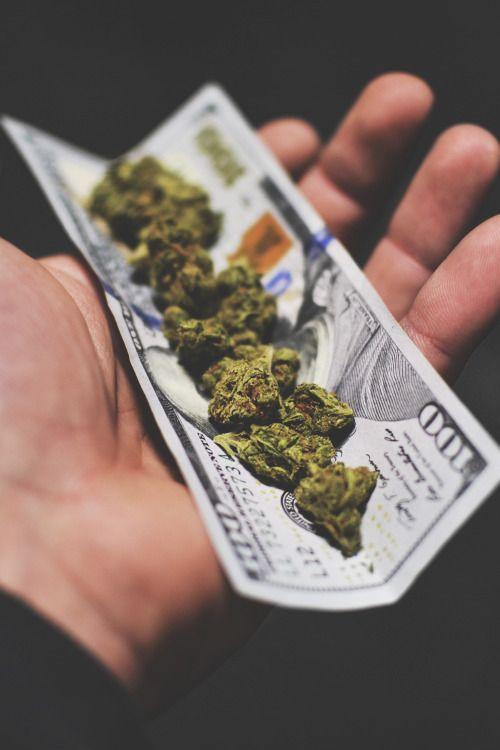 Drug Money by Alex Trentch