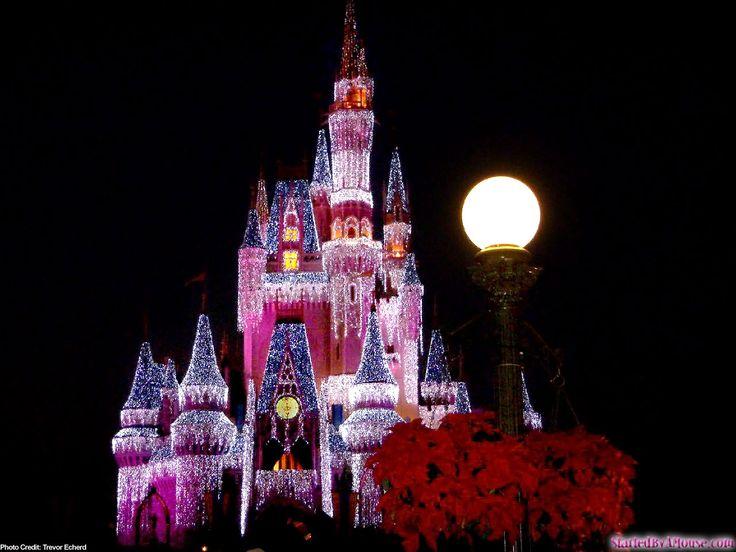 CindyChristmasCastle12801 1280x960 Disney World ChristmasDisney CastlesChristmas WallpaperDisney