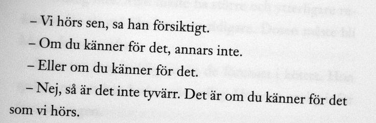 Lena Andersson-citat från Sandra Beijers blogg.
