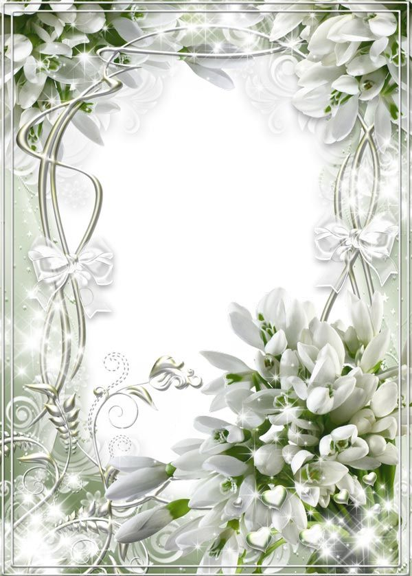 white transparent wedding frame with snowdrops - Wedding Picture Frames