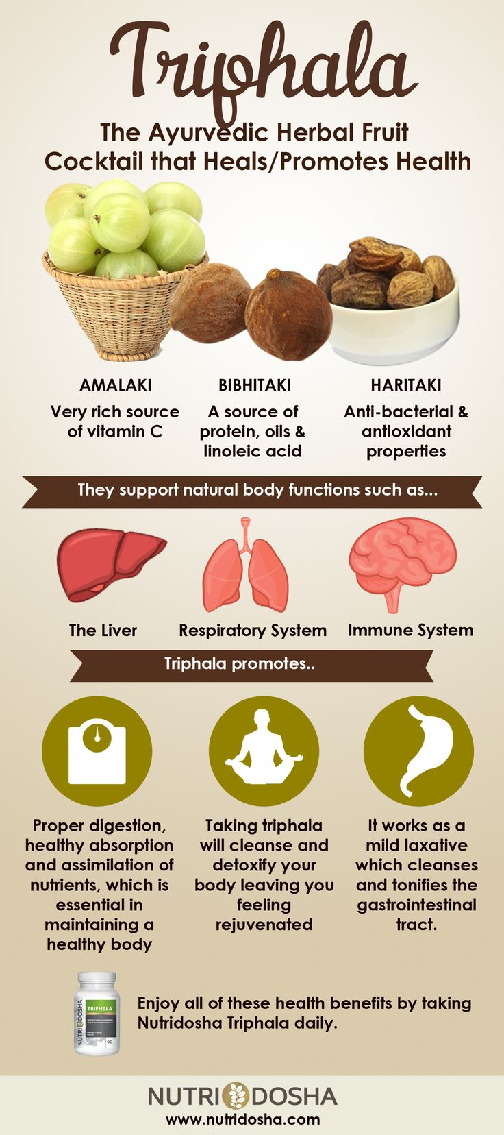 Benefits of Triphala Infographic.  Bibhitaki, Amalaki and Haritaki.  Powerful antioxidant.