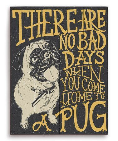 There are no bad days when you come home to a pug. ❤️