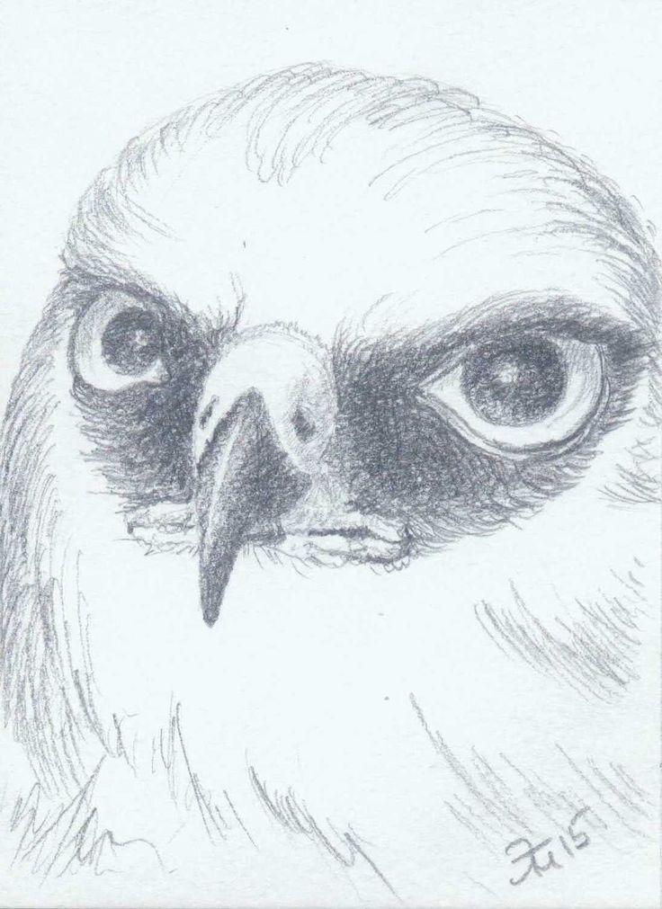 Elzati (Ольга Удовенко) - птица.