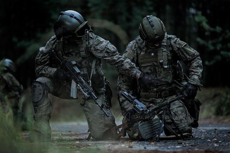 Polish military power!