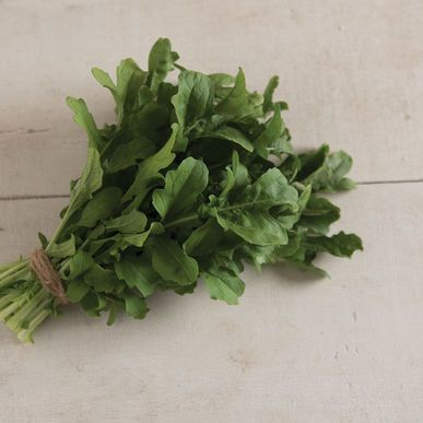 Esmee ORGANIC Arugula Seeds (Eruca sativa) + FREE Bonus 6 Variety Seed Pack - a $30 Value!
