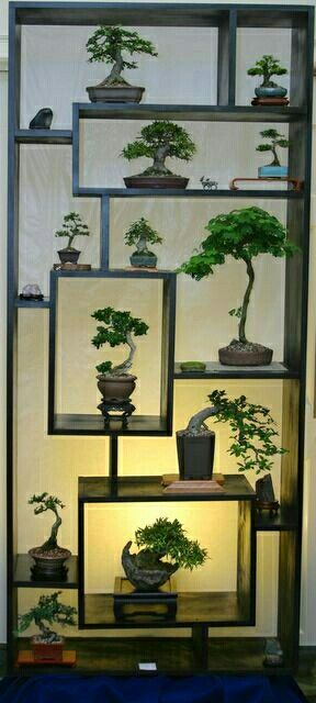 This would be a great indoor plant stand!