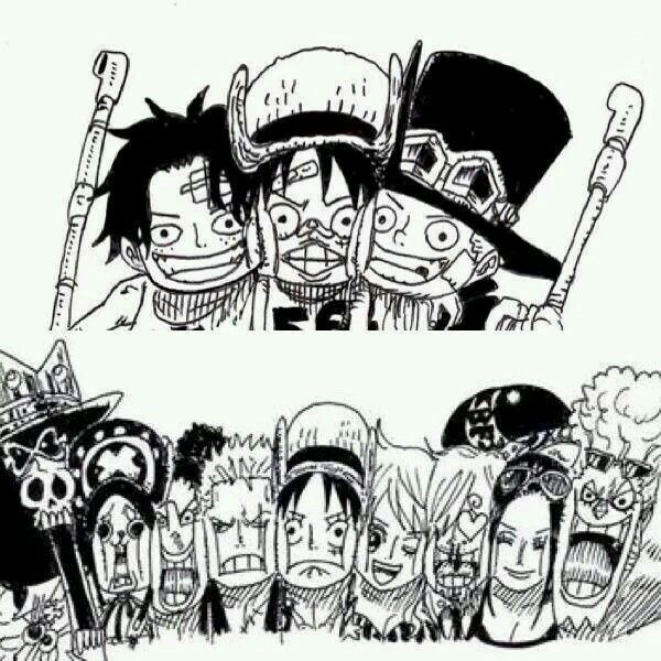 We are nakama ? one piece