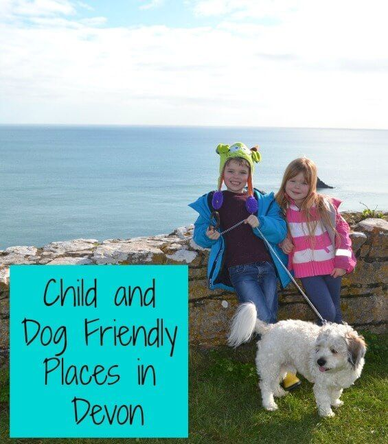 Child And Dog Friendly Places In Devon Dog Friends Dogs Kids Pet Friendly Holidays
