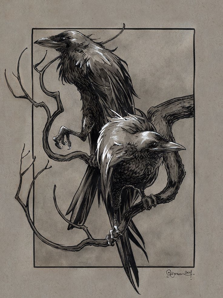 Huginn and Muninn by DanielGovar.deviantart.com on @deviantART