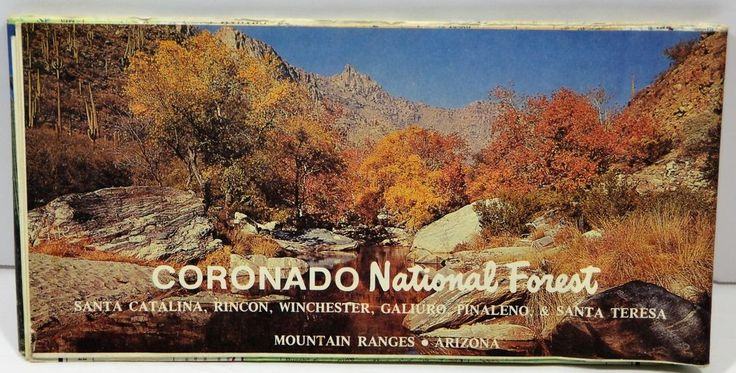 1980 Coronado National Forest Service Map Arizona Recreational Sites VTG Old