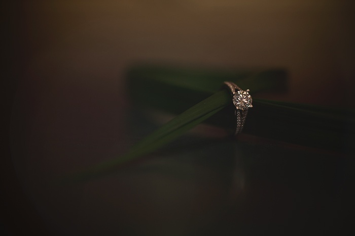 Ring shot inspiration.