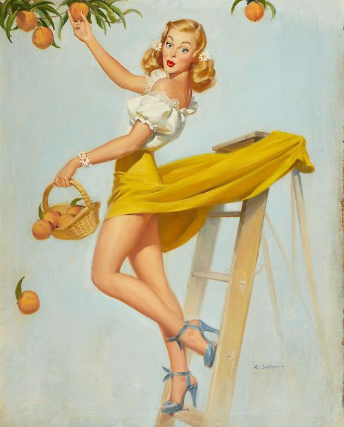 Florida Sunshine Girl pinup