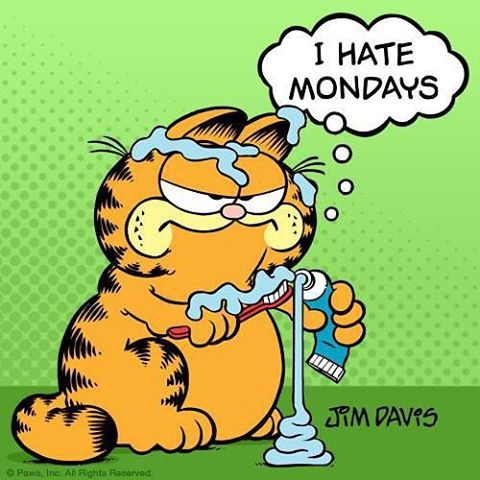 1000+ images about Garfield - Cat Humor at it's Best ...  I