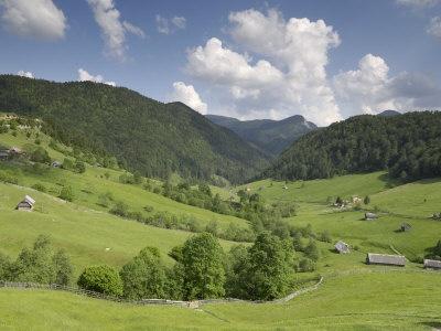 Transylvania!