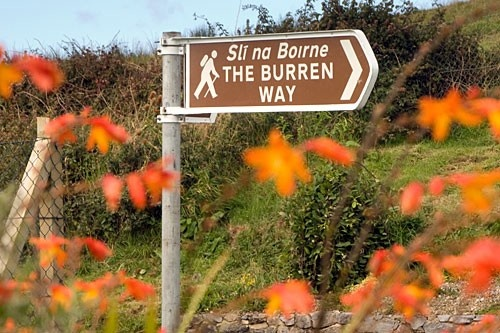 The Burren Photos at Frommer's - Hikers love the Burren Way for its otherworldly views.