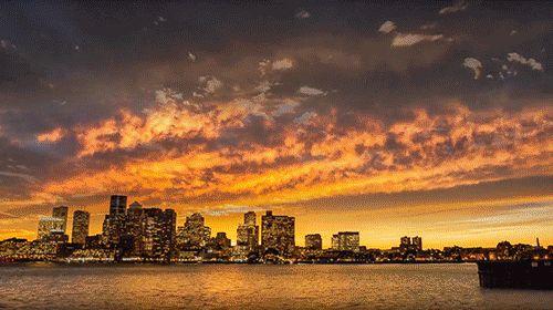 Dat Nature: Amazing New York City