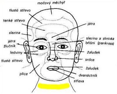 Přečtěte si svůj obličej