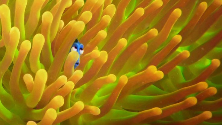 Dory embarks on her journey to find her family in one of two new trailers for Disney Pixar's Finding Dory. The other new trailer features the titular fish swimming around the film's log…