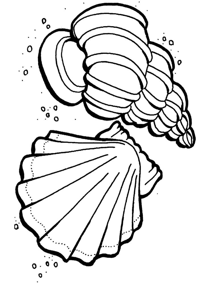 10 best images about Coloring pages on Pinterest Dovers, Starfish - best of number 3 coloring pages preschool