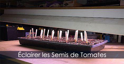 Éclairage pour semis de tomates - Installer les lampes horticoles. Guide : http://www.jardinage-quebec.com/guide/semis-de-tomates/graines-tomates-5.html