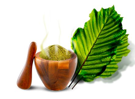 Remedy for Kratom causing Nausea, Vomiting, Sweats Stomach Pain and Constipation the day after use. Help for side effects from Kratom powder.