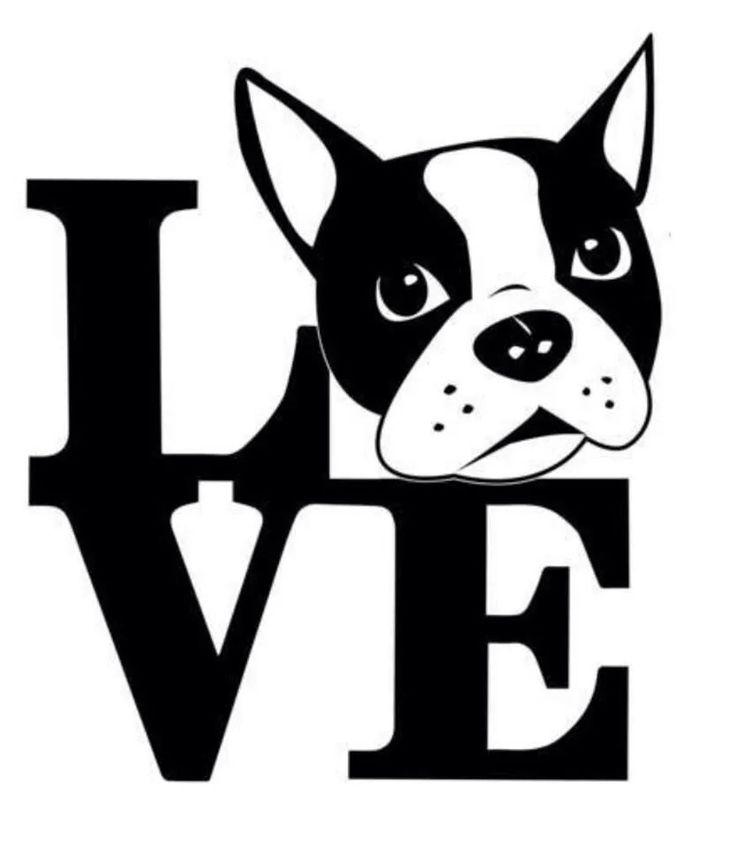 Boston Terrier Love                                                                                                                                                                                 More