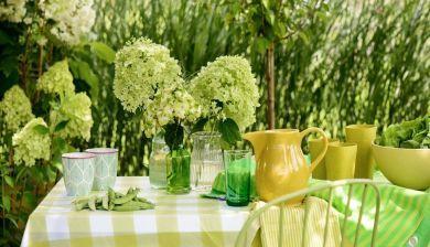 Tuinplant van de Maand Juli: de hortensia - FemNa40