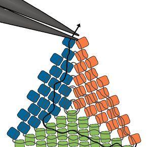 Peyote Stitch Triangle | Beading Techniques | Fusion Beads