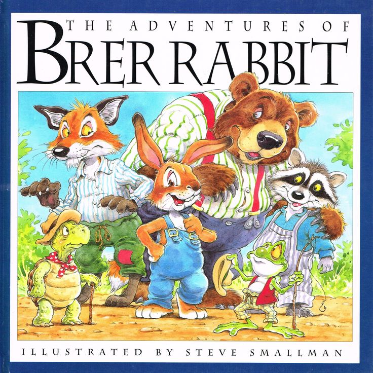 Robot Check Rabbit Book Rabbit Tale Adventure