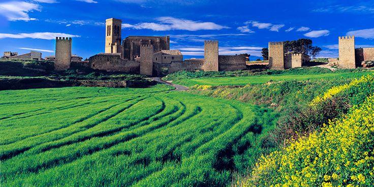 Artajona, Navarra. España. Spain.