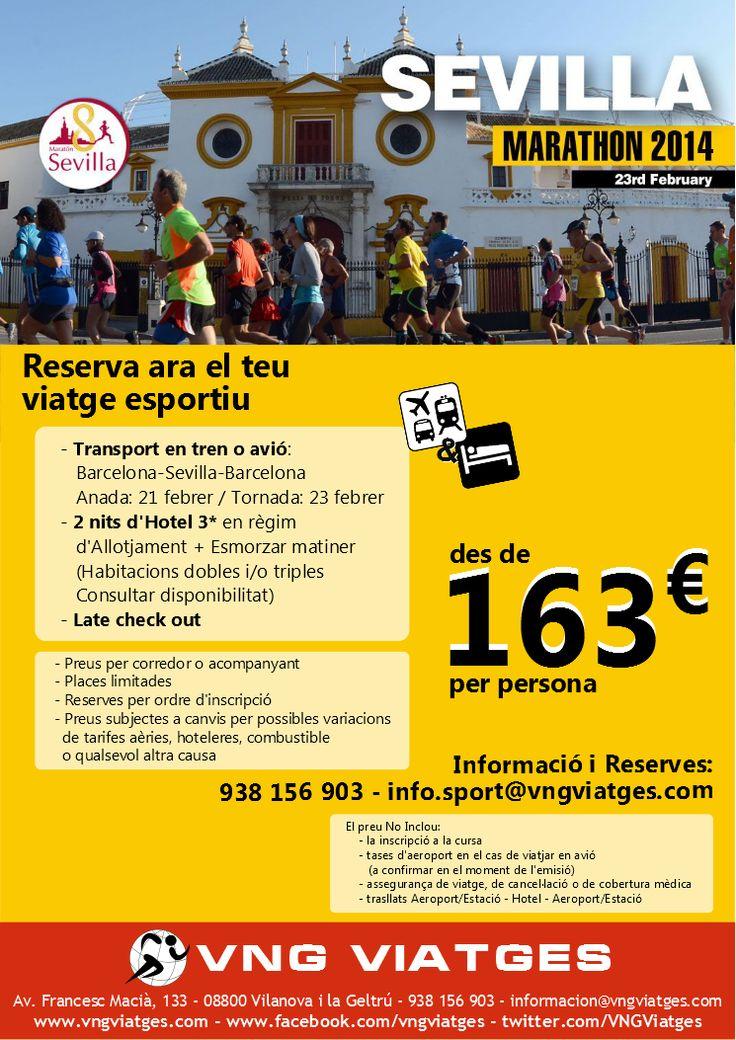 Viaje deportivo organizado a la Maratón de Sevilla 2014 - VNG Viatges